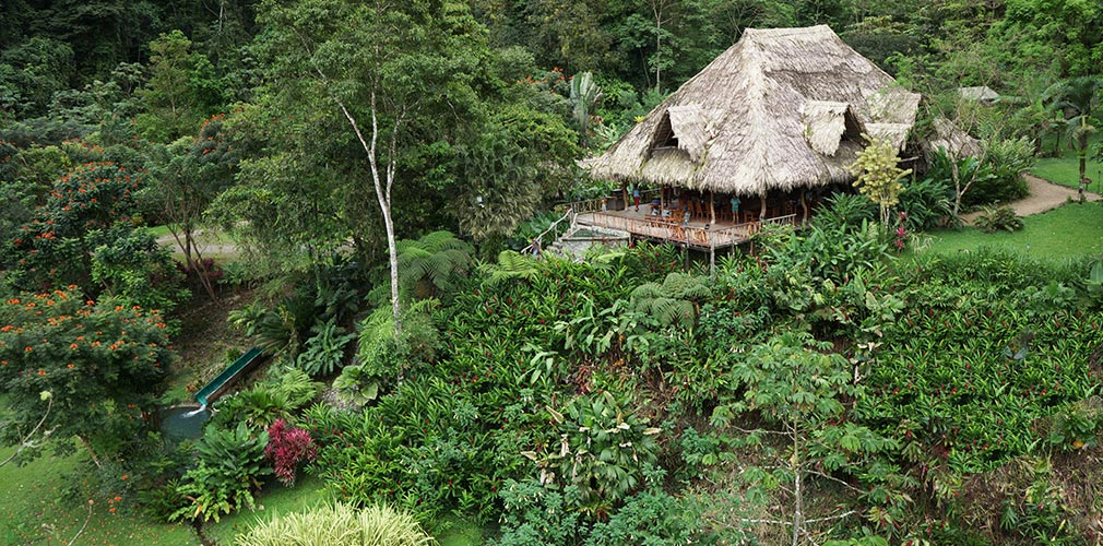 Lodge in rainforest